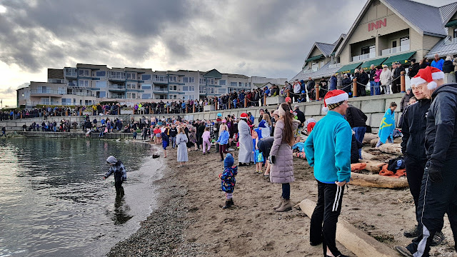 The Polar Bear Swim at Sidney BC...
