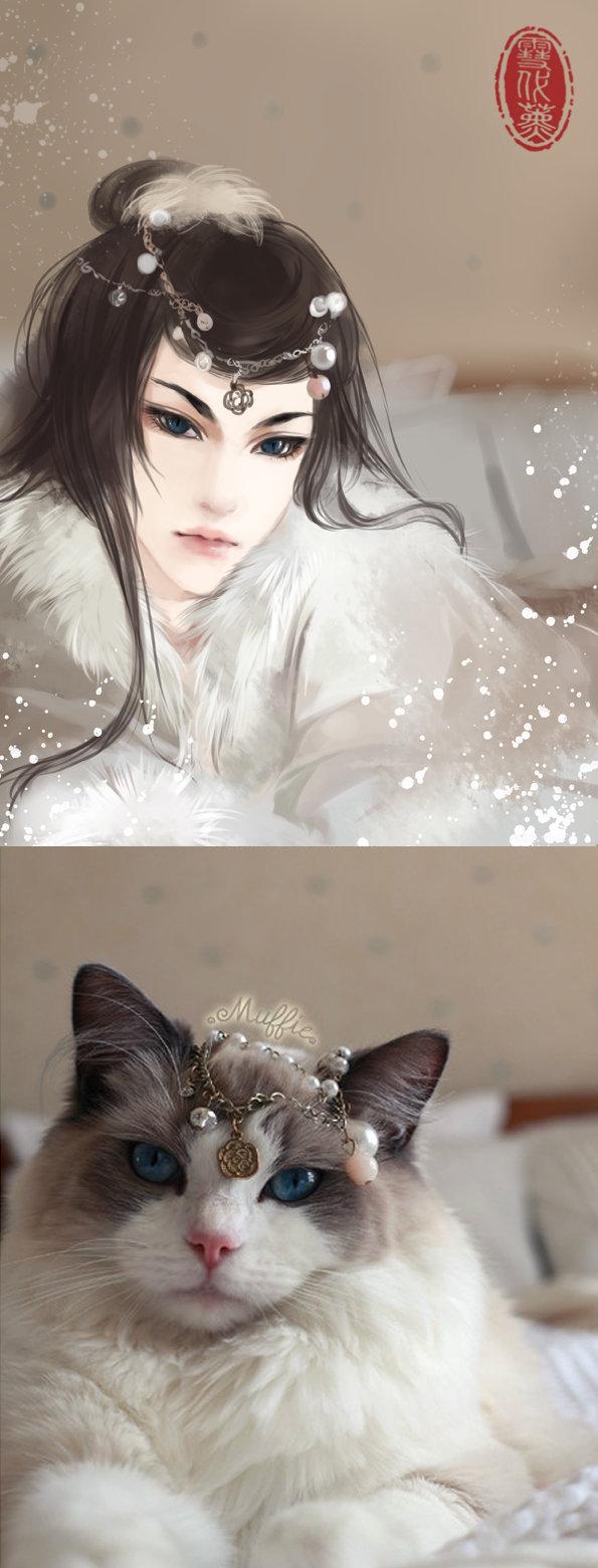 Kot narysowany jako kobieta z anime 13