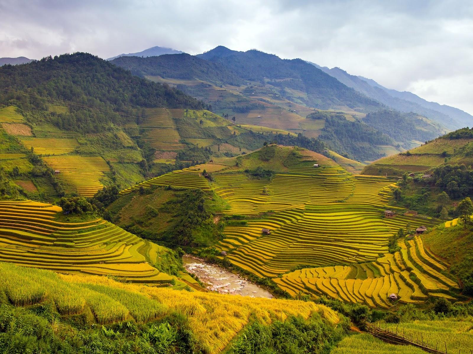 Download Vietnam Wallpapers