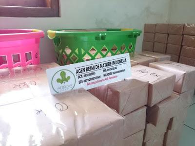 Paket Kemasan Polos Obat Asam Urat