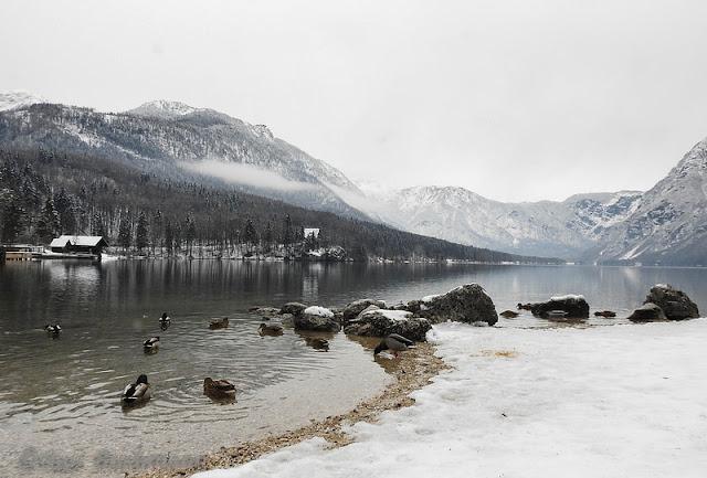 lago Bohinj alta carniola