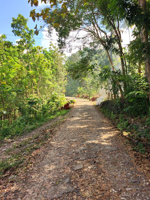 jalur menuju bukit panguk