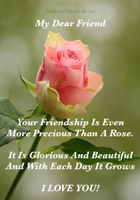 whatsapp rose images