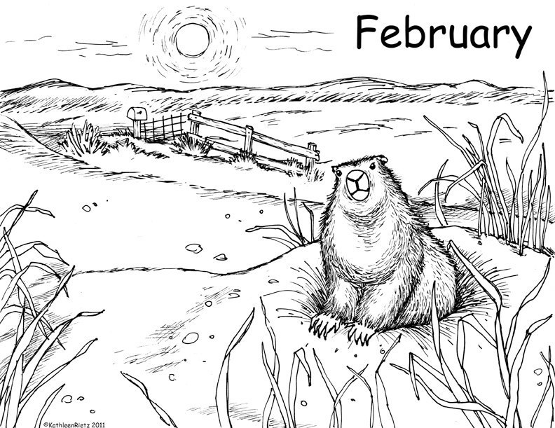 Kathleen Rietz Illustration and Design Groundhogs Day Coloring Page