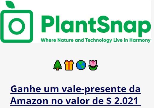 Sorteio de 3x Gift Cards da Amazon de $ 2021