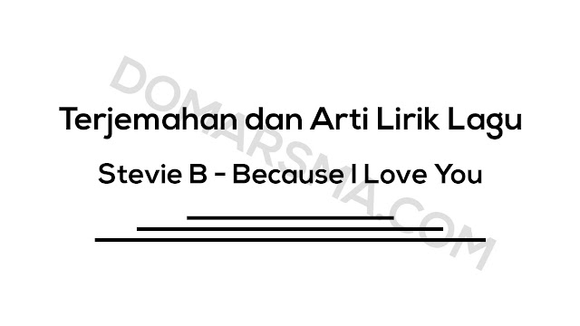 Terjemahan dan Arti Lirik Lagu Stevie B - Because I Love You