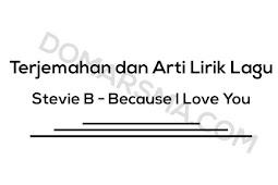 Terjemahan dan Arti Lirik Lagu Stevie B - Because I Love You