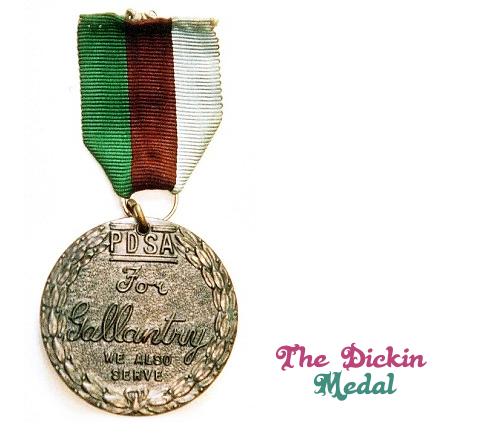 Image result for Dickin Medal blogspot.com