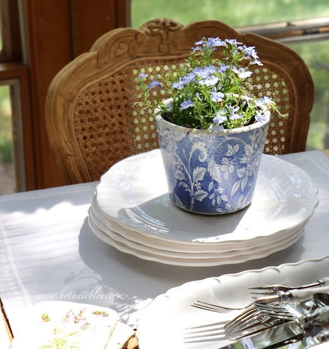 French Country Everyday Table Setting with blue lobelia bedding plant