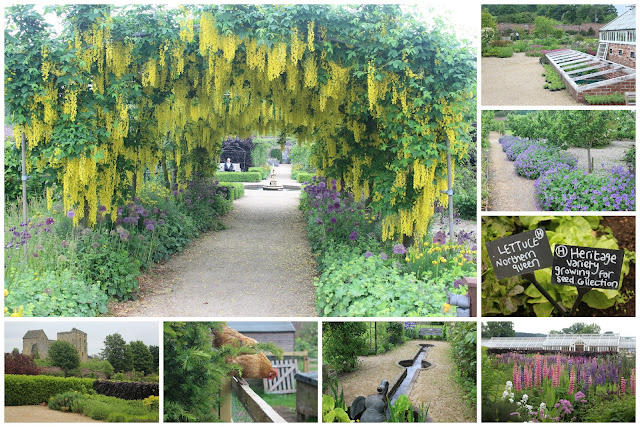 A selection of pictures from Helmsley Walled Garden