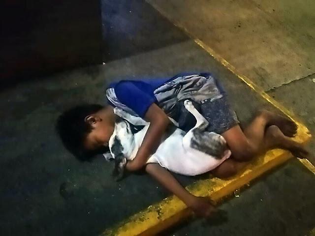 Фотография мальчика, спящего в обнимку с собакой на бетоне, содрогнула мир