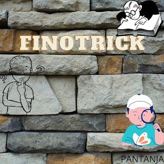FINOTRICK