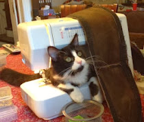 Orion and the Sewing Machine
