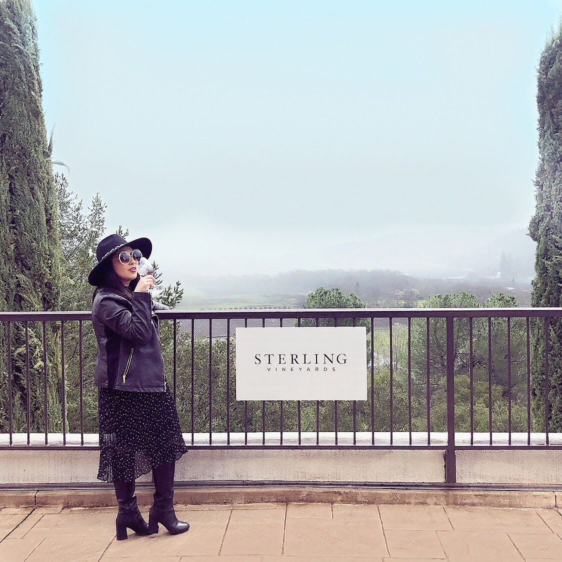 Napa Valley,  Sterling Vineyard, Beringer Vineyard, Napa Travel Guide