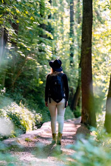 Premiumwanderweg DonAUwald | Etappe 3 von Gundelfingen nach Dillingen 10