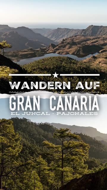 Wandern auf Gran Canaria – Von El Juncal ins Naturschutzgebiet Pajonales 21