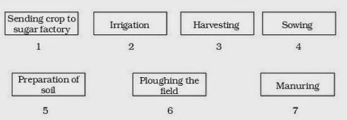 modeducation 8 science ques no 10 crop production