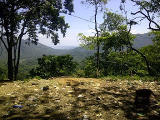 Hutan Pusuk