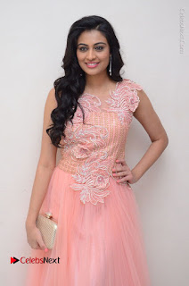 Actress Neha Hinge Stills in Pink Long Dress at Srivalli Teaser Launch  0024.JPG