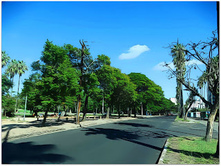 Avenida Osvaldo Aranha, Porto Alegre