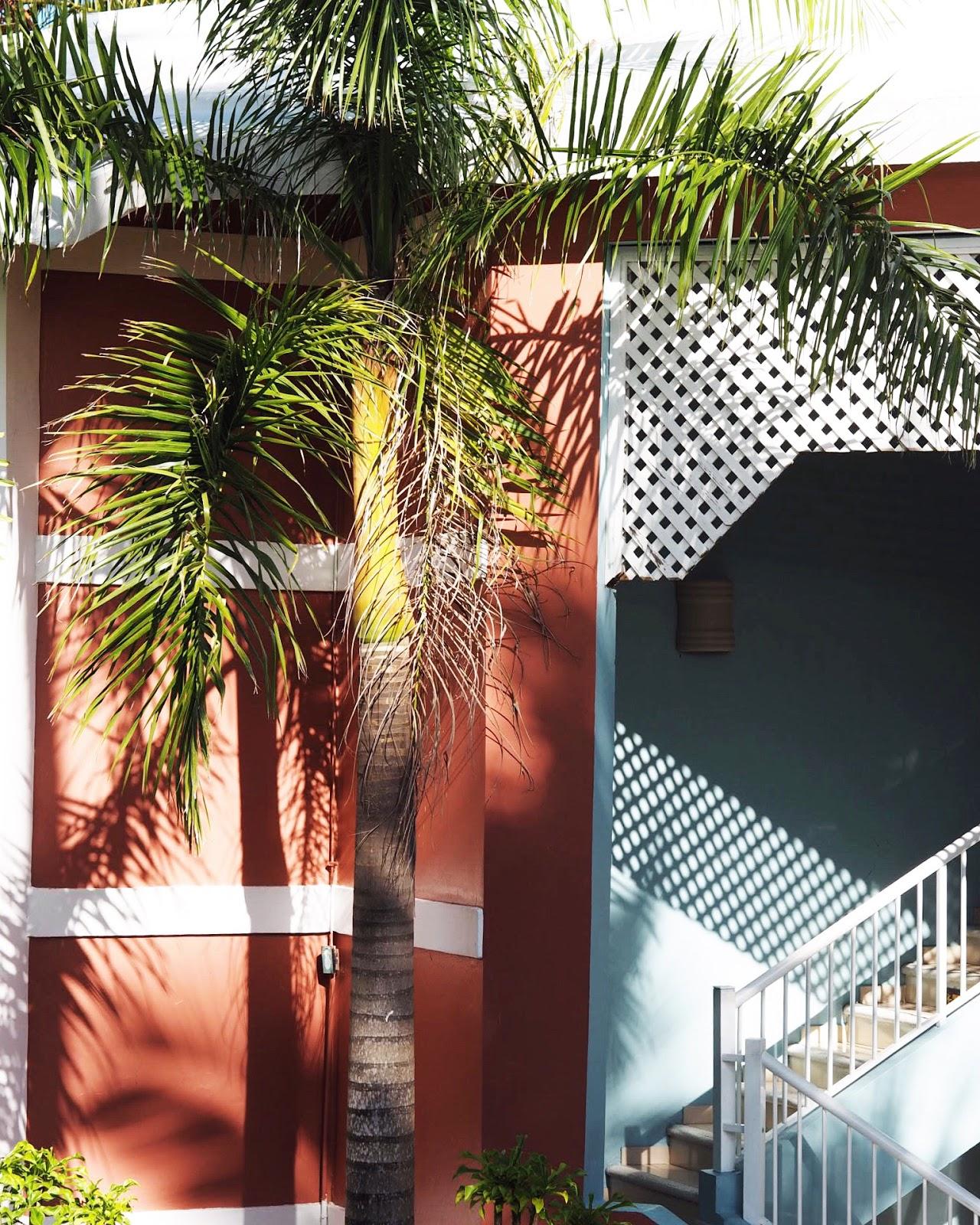 Grand Palladium Punta Cana Apartment Block Burnt Orange Palm Trees