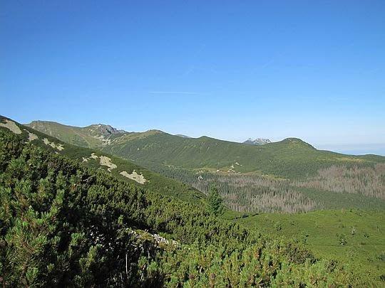 Dolina Gąsienicowa z Żółtej Turni.