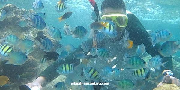 konsumsi selama wisata private trip pulau pari
