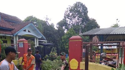 Pohon Tumbang di Majenang  Menimpa Toko Sepeda