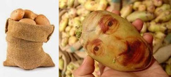Fatos científicos - DNA de Homem e de batatas