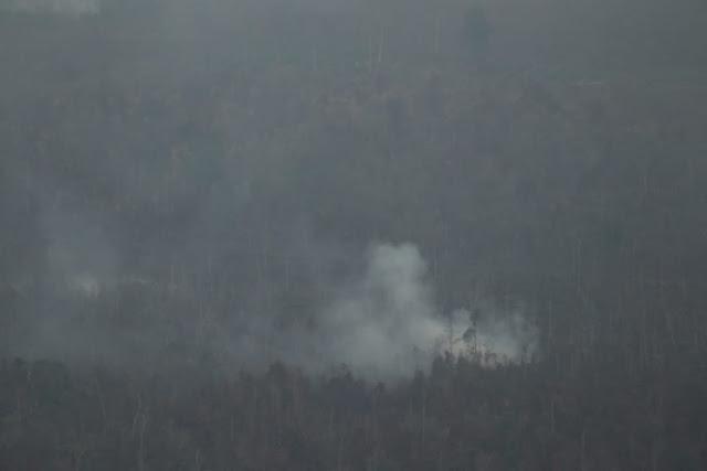 Karhutla di Riau, Kapolri: Kebakaran Disengaja
