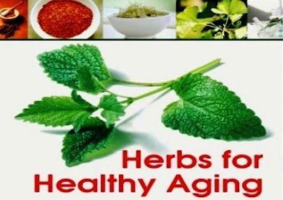 Herbs Helping with Healthy Aging