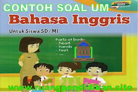 Contoh Soal Ujian Madrasah (UM) Bahasa Inggris Jenjang MI