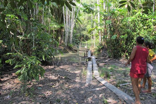 Ação do MPF na Justiça pede recuperação de igarapé assoreado pelo agronegócio