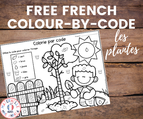 Check out this blog post to download a FREE colour-by-code French worksheet with a plants theme