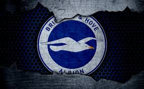 Watch Brighton & Hove Albion Match Today Live Streaming Free