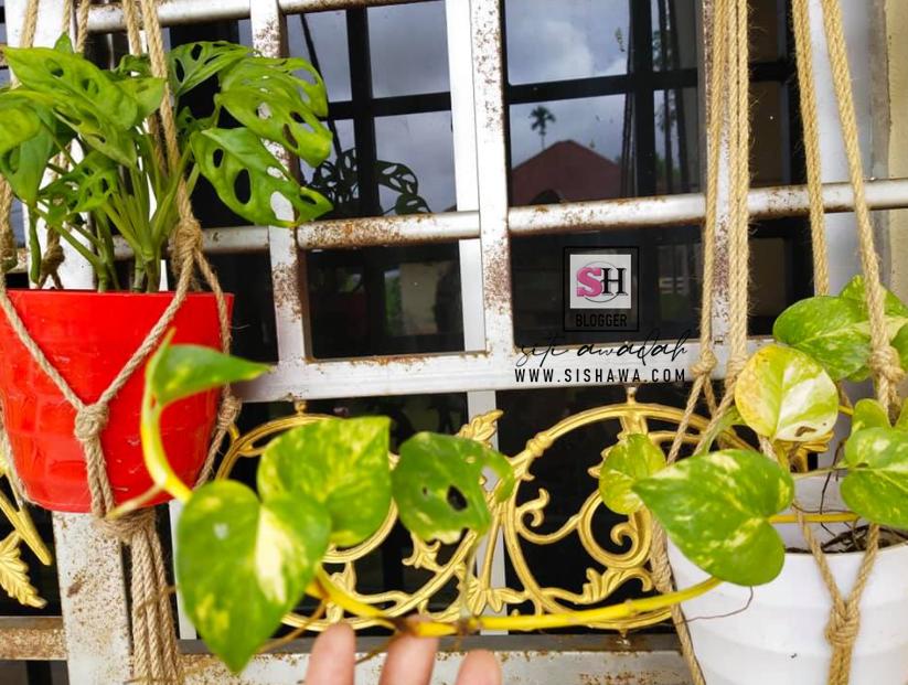 Projek Bina Taman Mini Skala Kecil Di Balkoni Tepi Rumah