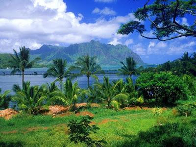 Nature-beauty