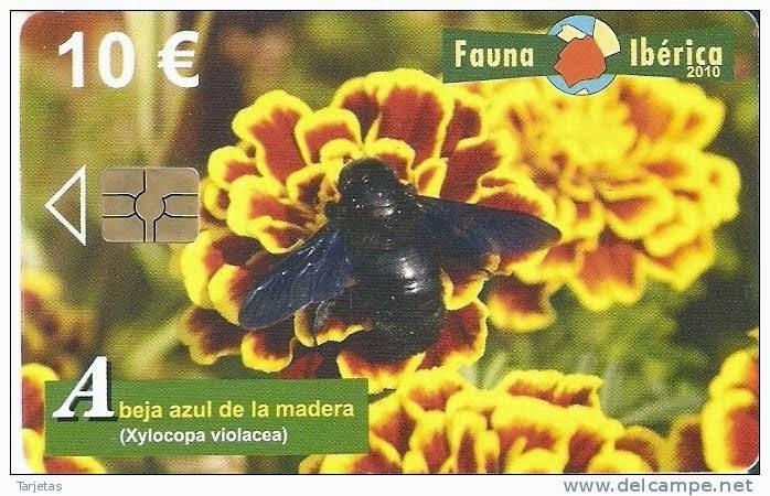 Tarjeta telefónica Abeja azul de la madera (Xylocopa violacea)
