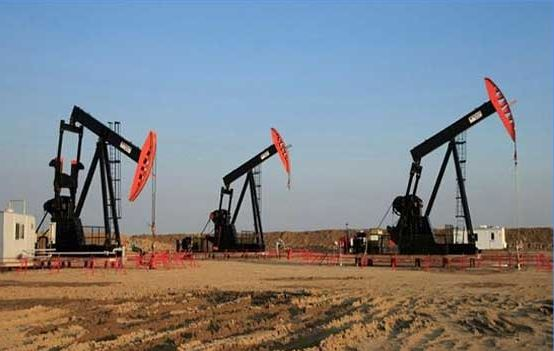 Oil reserve found in sanghar