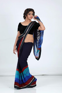 sheril virani in saree50
