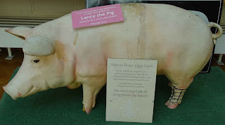 Lance, the donation pig, will happily accept any spare pennies!