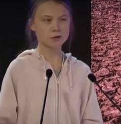 Greta Thunberg acumula abusos nos participantes do Fórum Econômico Mundial 10