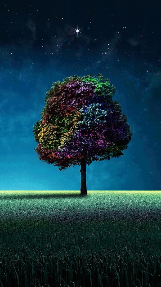 Papel de Parede Celular Árvore Colorida