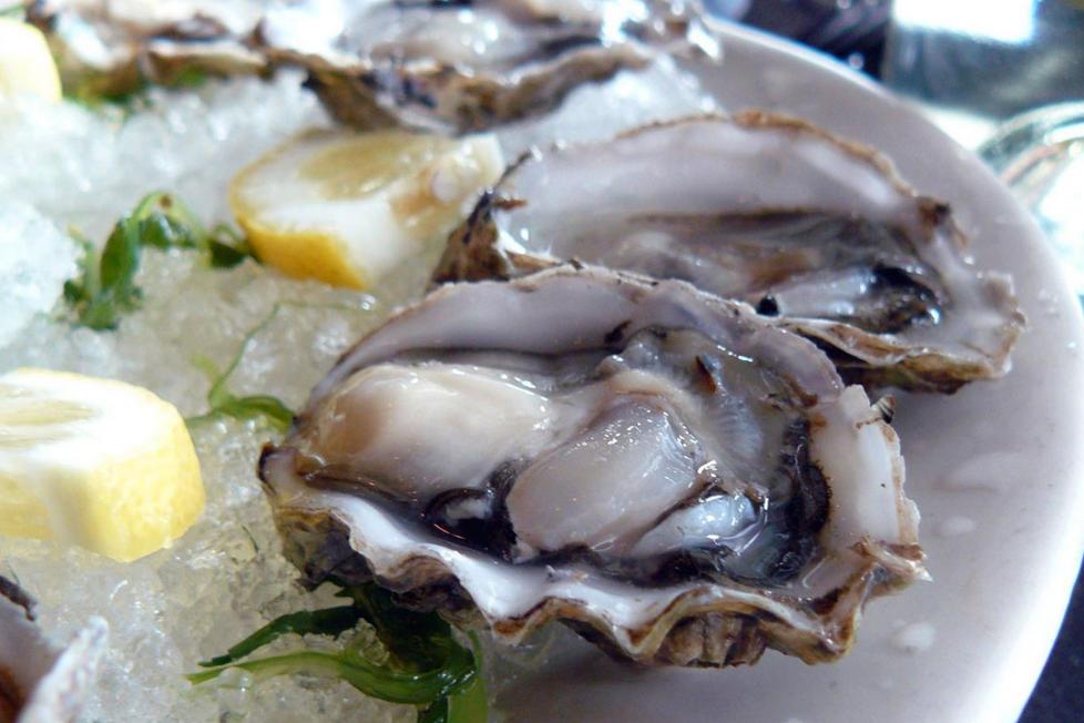 Batterio mangiacarne: donna muore dopo aver mangiato frutti di mare in spiaggia | Salute News