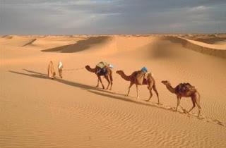 Os principais motivos por que os filhos de Israel permaneceram no deserto