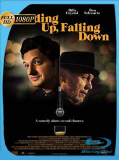 Caerse de risa (Standing Up, Falling Down) (2019) HD [1080p] Latino [GoogleDrive] SilvestreHD