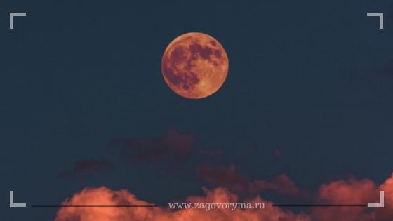 Полная Луна в Скорпионе: астрологи о рисках в мае 2020 года