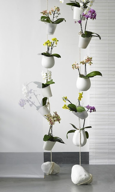Ideas To Decorate Interiors With Plants 3