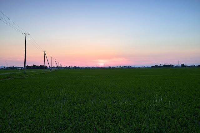後焼け仄か / The afterglow in Shonai Plain