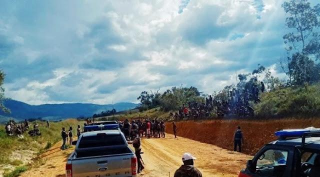 65 Babi Seharga Rp2 Miliar Akhiri Perang Dua Kampung di Papua